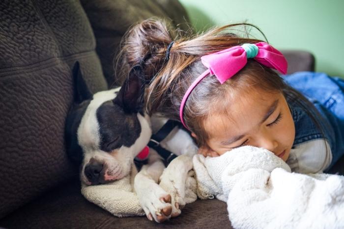 Dog sleeping with little girl